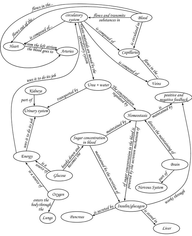 Mapping What They Know Concept Maps As An Effective Tool For